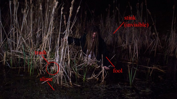 A Frank in a Swamp
