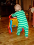 learning_to_walk_by_pushing_wheeled_toy