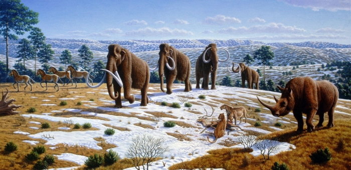 ice_age_fauna_of_northern_spain_-_mauricio_anton