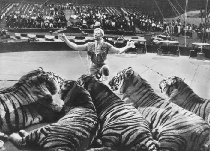Ringling_Bros_and_Barnum_&_Bailey_Circus_Gunther_Gebel-Williams_1969.jpg