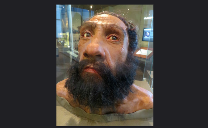 On the celebration of Neanderthals.
