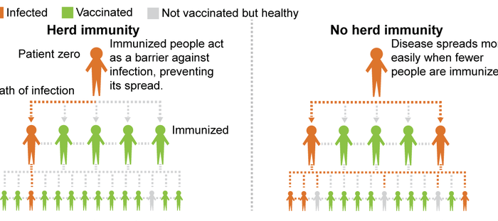 On immunity.